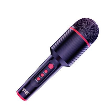 Soaiy MC8 Karaoke Mikrofon