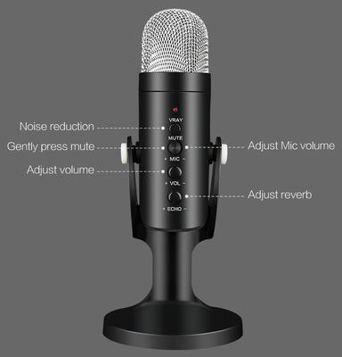 Zore Stüdyo Mikrofon
